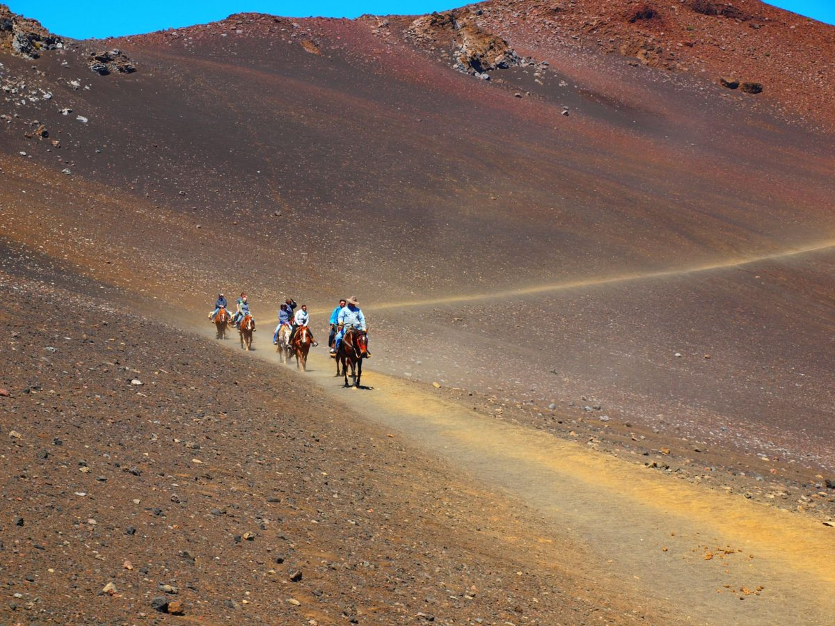 Maui Horseback Ride in Haleakala